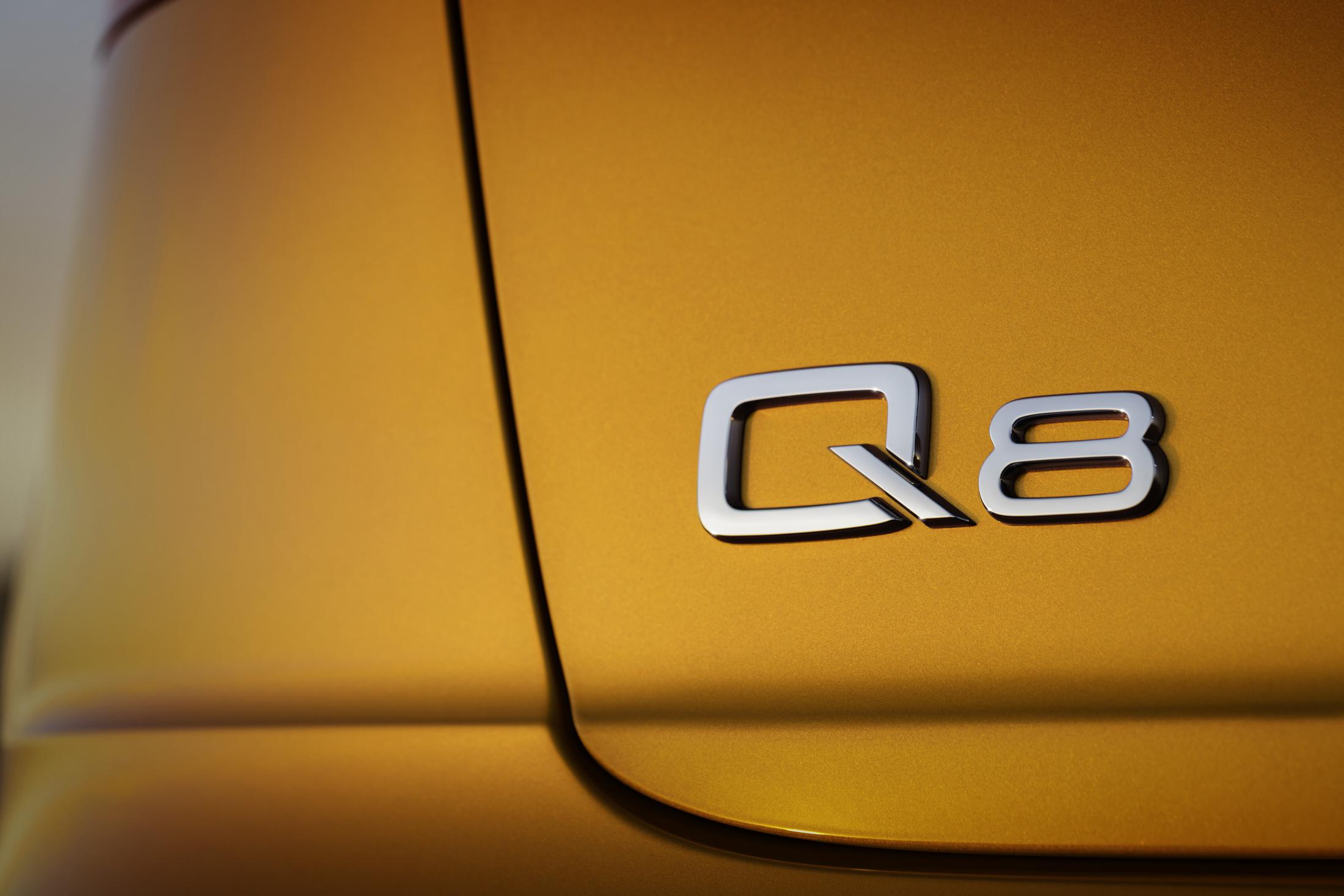 RWink_Audi_Q8_Detail_002_B2200